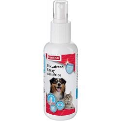 Spray dentifrice chat et chien